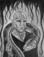 Voldemort and Nagini by Alkmerethiel