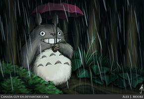 Totoro by Canada-Guy-Eh