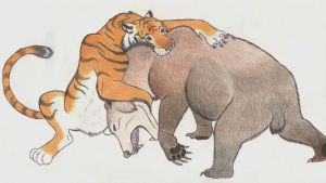 Tiger vs bear by Dark-Hyena