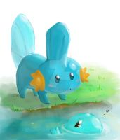 Mudkip? by ChocoSand