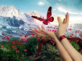 Butterfly by Cirasella