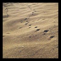 Footprints in the Sand by dispirited