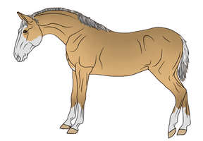 RR Kennels Lusitano Design 5 by DragonicWhispers
