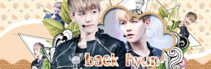 130723 - Cover Zing BaekHyun by lovefany96