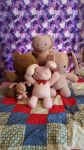 My Ouran Plushies by CocoKanadeChan