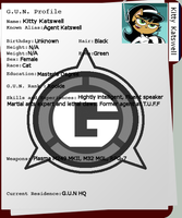 Kitty Katswell G.U.N Profile by SonicSatamX93