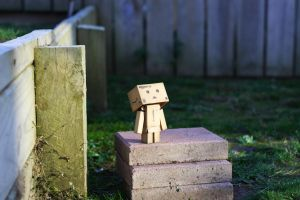 Danbo's enlightenment I by pilwe