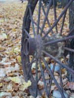 Old wagon wheel by thaddman