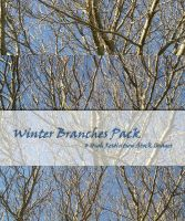 Winter Branches Stock Pack by powerpuffjazz