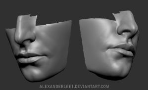 ZBrush head sculpture WIP 01 by AlexanderLee1