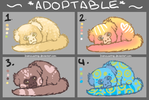 Adoptable Marmosets by Inamousetrap