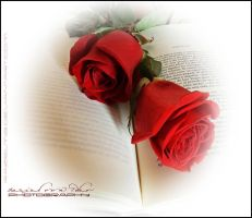 Roses and book II by RazielMB