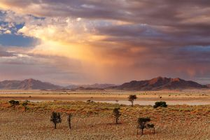 Some Hope for Humanity by hougaard