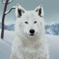 Animal #3 - Wolf by Silverti