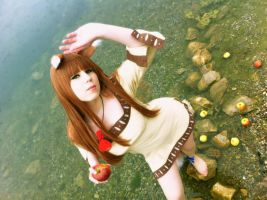 Spice and Wolf Holo Cosplay by K-I-M-I