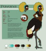 .  VoS  .  Pavana Ref Sheet by rewynd-studio