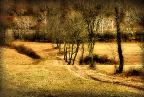 Down to Bottom Land by TimLaSure