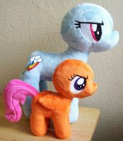 WIP Large Rainbow Dash and Scootaloo by PlushieScraleos