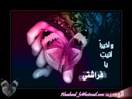 :: My Butterfly :: by alwaheed2007