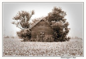 Sharecropper's Past... by 1photojunkie