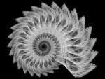 White Spiral by Thelma1