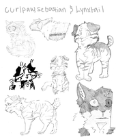 Curlpaw, Sebastian and Lynxtail sketches by PenguinEatsCarrots