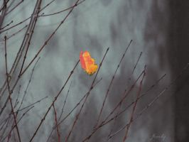 simple autumn leaf by freaky-x