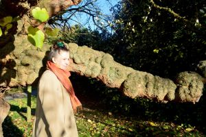 Mrs A* And A Tree With An Enormous Knob by aegiandyad