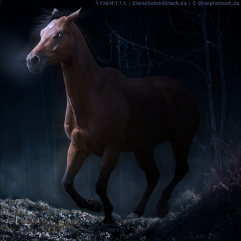 HEE Horse Avatar: I Am Redeemed by VendettaImaging
