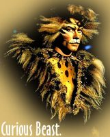 Rum Tum Tugger is a Curious... by musicals