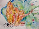 Red-orange butterfly by FranciscaMeena