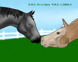H.M.S. Wavy Navy x H.M.S. Goldfish II by Starcather9