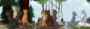 Warrior Cat families! by xseashell