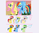 FlutterDash Shipping Adopts - 10 points CLOSED by Arxielle
