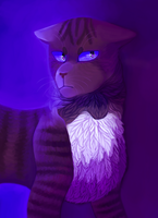 Hawkfrost 2017 by DrawMachine030