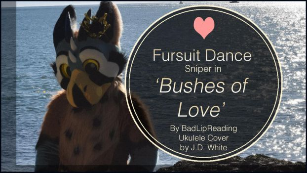 Personal - Sniper Dances to 'Bushes of Love' by TwilightSaint