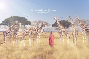 Enchanting giraffes by israelcs