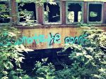 Abandoned Train: I Wrote The Proof by TemariAtaje