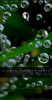 Package - Nighty Droplet Shots by resurgere