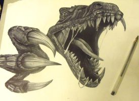 raptor biro art by AprilJade