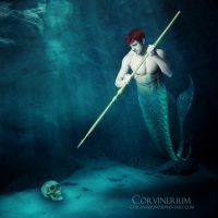 Collection by Corvinerium