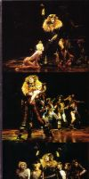 Rum Tum Tugger 4 by Lorrenjopie
