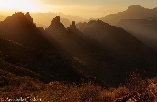 Roque by Annabelle-Chabert