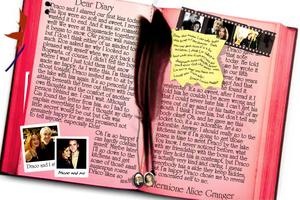 Hermione's Diary by Nightway