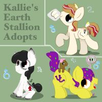 Kallie's Earth Stallion Adopts by kalie0216