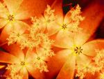 Tiger Lilies by Shadoweddancer