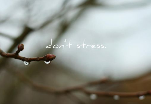 wallpaper - don't stress by flowersong