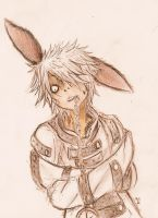 The White Rabbit by xMr-Narwhal