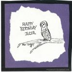 Barn Owl Birthday by micperson