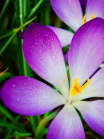 For my husband by Schreiberseele